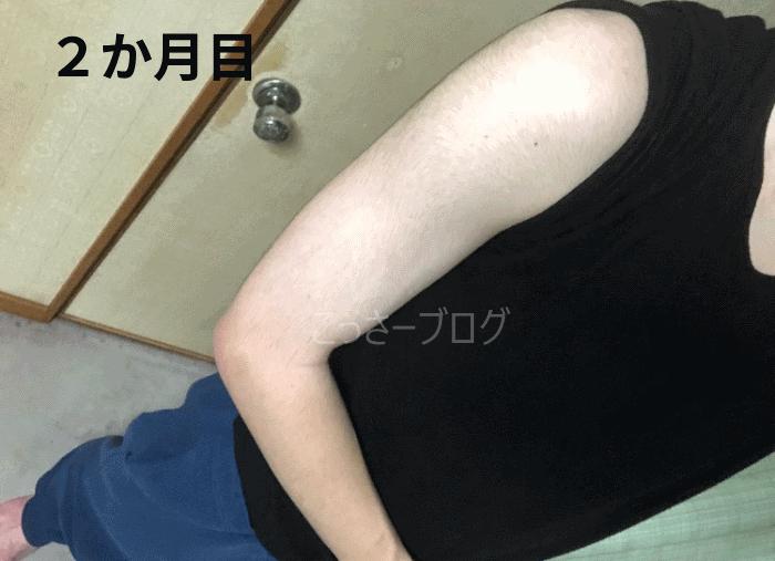 筋トレ2か月目 上腕の写真